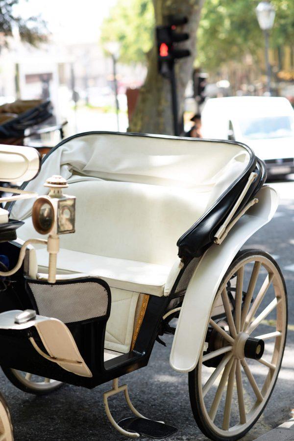 Carruaje blanco y negro estacionado en una calle en la ciudad, a la espera de realizar una de las pedidas de mano,de las más originales